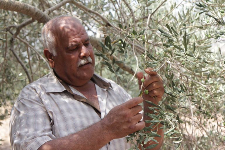 Abu Al Abed