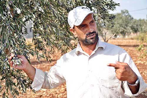 haidar-al-karem