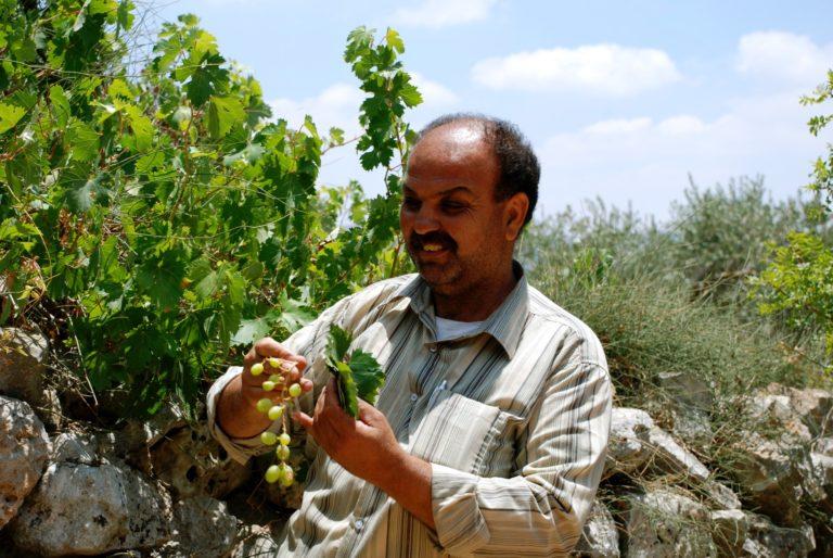 Ameen Hedareyh Alrameh